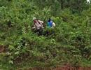 Nhẹ lòng khi thấy 8 người tránh lũ trong rừng sâu vẫn đảm bảo sức khỏe