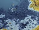 """Hồ """"thuốc độc"""" – """"Cái bẫy"""" dưới đại dương giết hầu hết sinh vật không may chạm vào"""