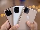 iPhone 11 về Việt Nam đầu tiên có giá trên 68 triệu đồng