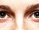 Nhìn chằm chằm vào mắt ai đó trong 10 phút có thể gây ra trạng thái ý thức bị thay đổi