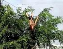 Người dân hoảng hốt khi thấy người phụ nữ đu dây điện