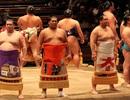 Cuộc đời của một võ sĩ Sumo: Kỷ luật thép, bữa ăn khổng lồ và giấc ngủ với... bình oxy