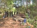 Khám nghiệm hiện trường vụ phá rừng: Phát hiện thêm 500m3 gỗ bị cưa hạ