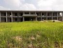 Trường được đầu tư 7 tỷ đồng dở dang, hàng trăm trẻ thiếu phòng học
