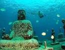 Bí ẩn ngôi đền hơn 1000 năm tuổi chìm sâu dưới nước