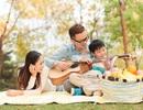 Green Homes – Tiến độ nhanh, chất lượng tốt