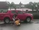 Phẫn nộ người đàn ông hành hung vợ cũ giữa đường