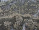 Tìm thấy dấu hiệu sớm nhất của sự sống trong những tảng đá 3,5 tỷ năm tuổi