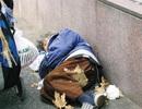 Vì sao dù nghèo đến mấy người Nhật Bản không bao giờ đi ăn xin?