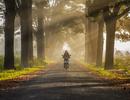 Những góc nhìn của du lịch Việt Nam trong năm 2019