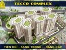 """Sức """"nóng"""" của dự án Tecco Camelia Complex dịp cuối năm"""