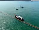 Cty CP Tập đoàn Xây Lắp 1 Petrolimex khẳng định vị thế, vững vàng hội nhập quốc tế