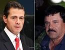 Cựu Tổng thống Mexico bị cáo buộc nhận 100 triệu USD từ trùm ma túy El Chapo