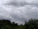 """Rùng mình với """"mưa nhện"""" ở Brazil"""