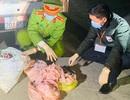 Bắt giữ  xe ôtô tải vận chuyển 1,7 tấn bì lợn