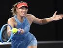 "Australian Open: Federer tốc hành, ""búp bê"" Sharapova hạ Wozniacki"