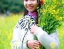 """Du khách ùn ùn kéo đến """"check in"""" vườn hoa cải rực vàng ở Ninh Bình"""