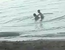 """Cặp đôi khách Tây thản nhiên """"làm chuyện ấy"""" ngay tại bãi biển công cộng"""