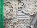 """Đá trên """"bức tường khủng"""" bị rơi hàng loạt, người dân chạy tán loạn"""