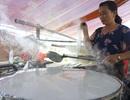 Thanh Hóa: Làng truyền thống làm miến dong nhộn nhịp dịp giáp Tết