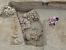 Phát hiện pháo đài Ai Cập 2.300 tuổi bảo vệ cảng trung chuyển voi chiến thời cổ đại