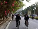 Con đường hoa đào nở đỏ rực ở Hà Nội báo hiệu Tết đã cận kề