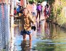 """Gần 3 tháng, 40 hộ dân bị """"nhấn chìm"""" trong lụt lội, ô nhiễm!"""