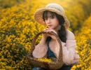 Nàng thơ tuổi teen khoe sắc giữa vườn hoa cúc vàng