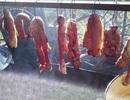 """Món thịt thối đặc sản """"lúc nhúc ròi"""" ở vùng núi Sơn La"""
