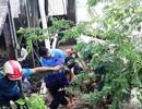 5 công nhân cấp thoát nước bị điện giật, 2 người tử vong