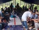 Khởi tố 12 đối tượng đánh bạc trong rừng cao su
