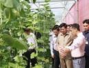 """Thủ tướng Lào thăm khu công nghệ cao, trang trại trồng rau """"thông minh"""" ở Đà Nẵng"""