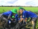 Tuổi trẻ tiên phong xây dựng kết cấu hạ tầng nông thôn
