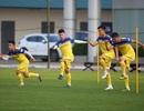 Quang Hải hăng say tập luyện, HLV Park Hang Seo hài lòng