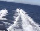 Nghi phạm ma túy bất ngờ cứu tuần duyên sau màn rượt đuổi căng thẳng trên biển