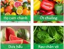 Đi tìm loại thực phẩm tốt nhất cho sức khỏe não bộ!