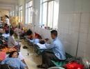 Quảng Bình: Sốt xuất huyết bùng phát, nhiều bệnh viện quá tải gấp 5 lần