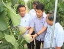 Quảng Trị huy động hơn 65 ngàn tỉ đồng xây dựng nông thôn mới