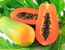 10 thực phẩm tốt nhất cho bệnh nhân sốt xuất huyết