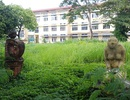 Hàng chục giảng viên, cán bộ trường ĐH Nghệ thuật, ĐH Huế bị chấm dứt hợp đồng
