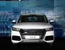 Triệu hồi hơn 560 chiếc Audi Q5 tại Việt Nam