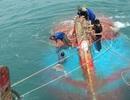 Tàu cá cùng 12 ngư dân chìm xuống biển Cù Lao Chàm