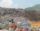 Đà Nẵng tiếp nhận, xử lý phản ánh về ô nhiễm môi trường