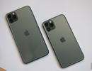"""Lượng đặt hàng iPhone 11 chính hãng đạt mức  """"khủng"""""""