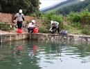 Sở TN-MT Hòa Bình báo cáo gì vụ đổ dầu thải gây sự cố nước sạch sông Đà?