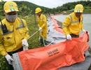Một tuần sau sự cố, Công ty Nước sạch sông Đà đặt tấm lọc dầu
