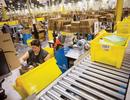 Amazon lập đội chuyên trách tại Việt Nam, chưa mở văn phòng đại diện