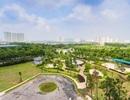 The Zen Residence – Chung cư sở hữu miền xanh vô tận
