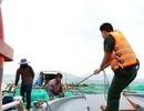 Bão số 5 hình thành trên Biển Đông, hướng về Bình Định - Ninh Thuận