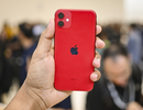 iPhone 11 chính hãng đã về kho, sẵn sàng bán ra